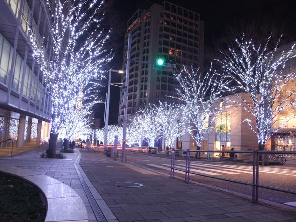 TOKYO20890.JPG
