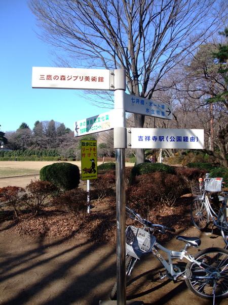 TOKYO30446.jpg