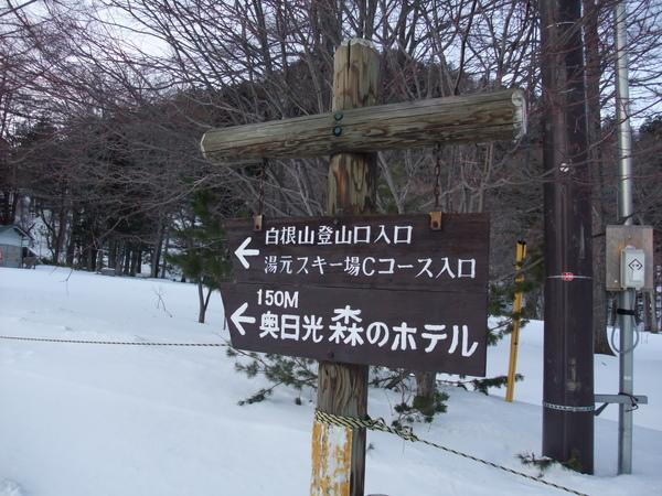 TOKYO五0703.JPG