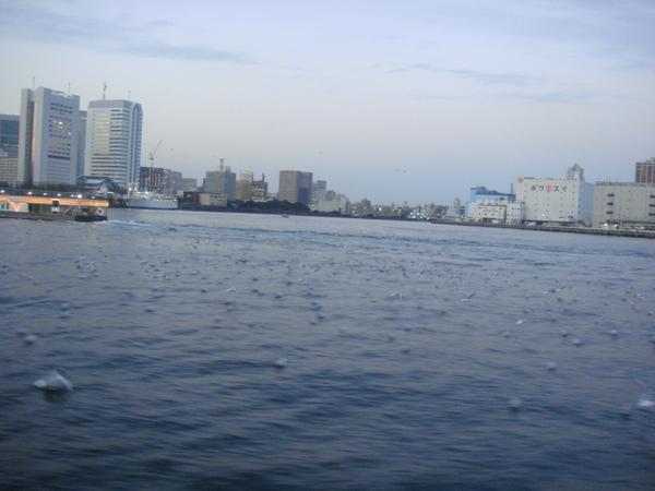 TOKYO60370.JPG