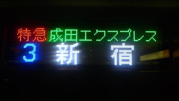 P1000058.JPG