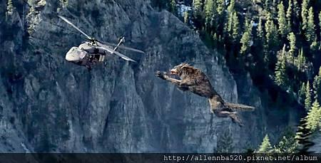 救援隊慘遭巨狼跳躍攻擊