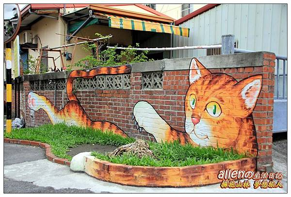 屋頂上的貓22.jpg