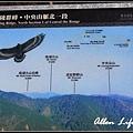 武陵櫻花32.jpg