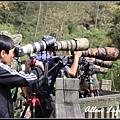 大雪山賞鳥60.jpg