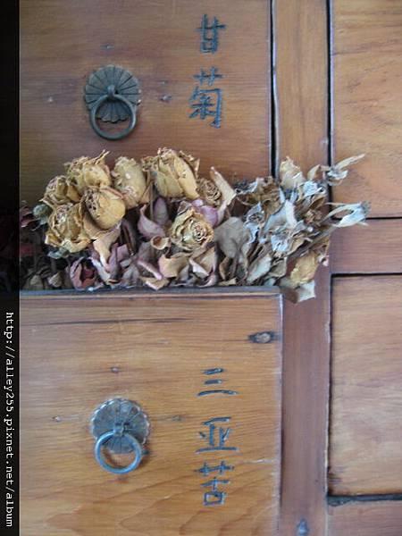 1000317台北藝術大學:達文奇