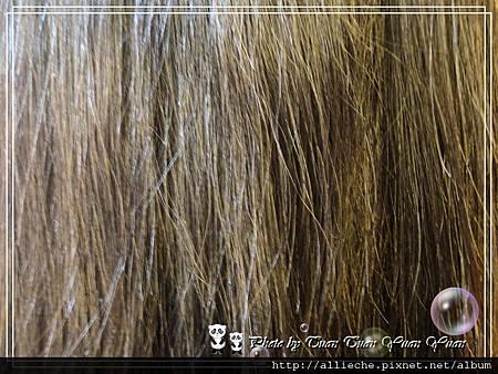科達製藥首烏洗髮精與蜂膠沐浴乳32