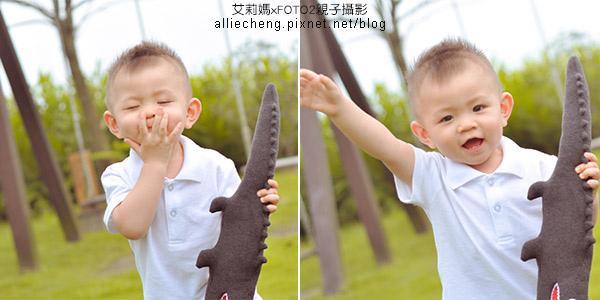Small-Image-(9).jpg