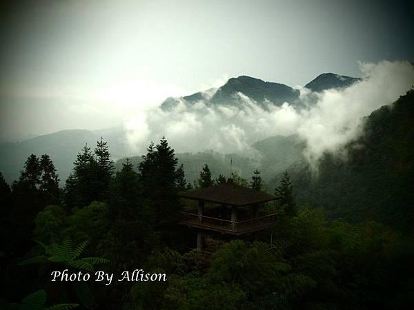 鳳凰谷鳥園的山嵐