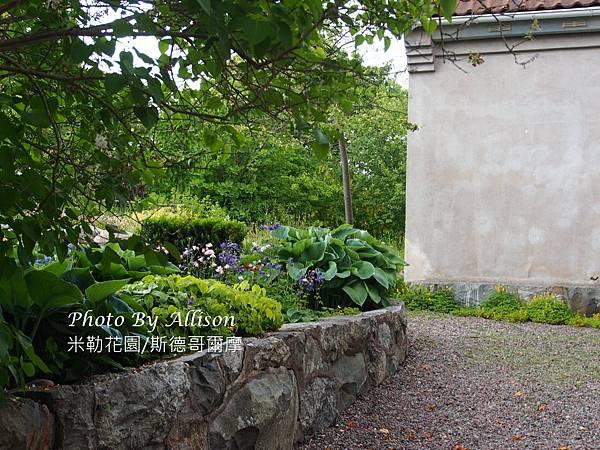 米勒花園的後花園