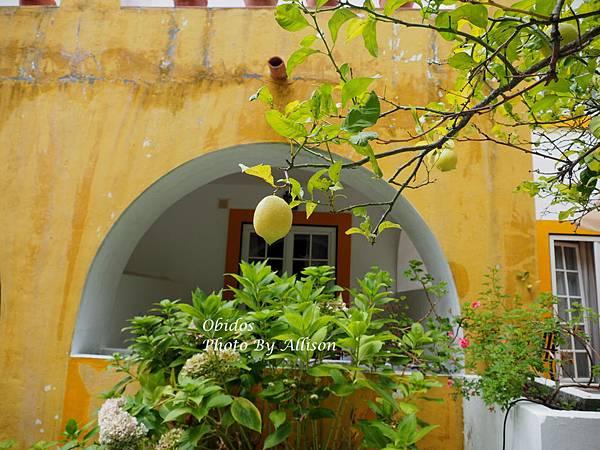 葡萄牙小鎮歐比都斯漂亮的餐廳
