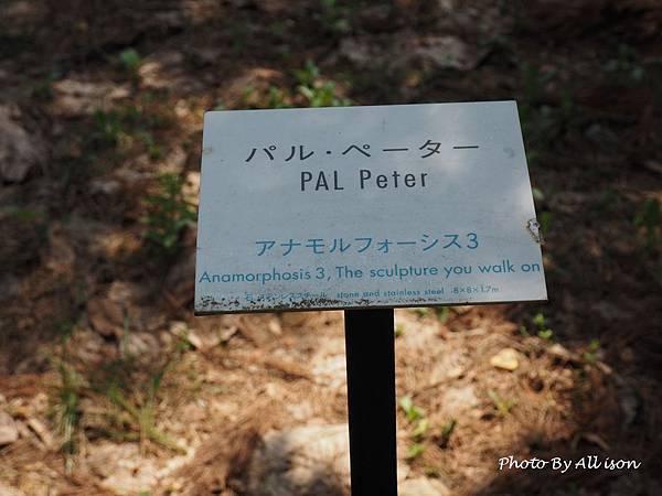 P4291047.JPG