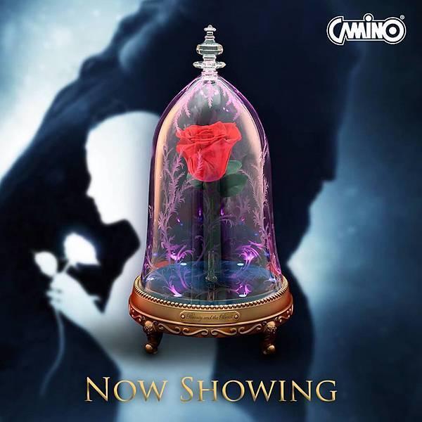 CAMINO_魔法玫瑰藍芽喇叭.jpg