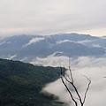 雲海7.jpg