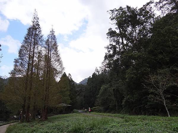 福山7.jpg