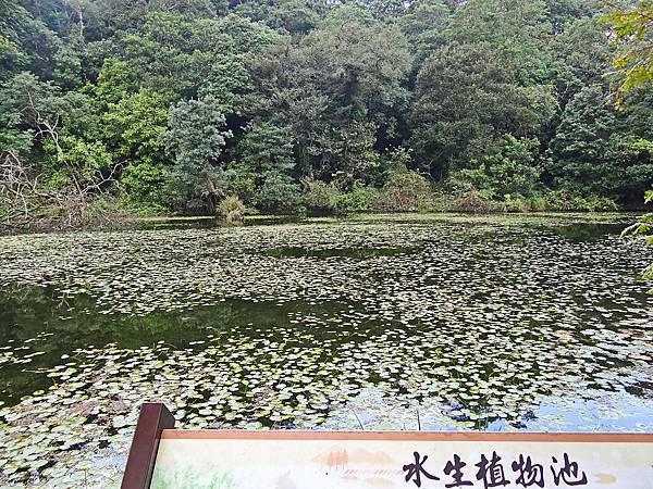 福山9.jpg
