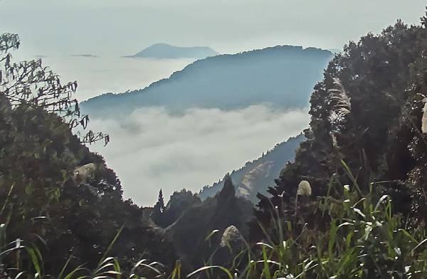 2014阿里山01.jpg