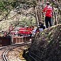 2014阿里山06.jpg