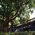林家花園4