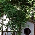 林家花園19