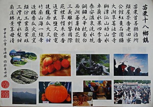 銅鑼杭菊花季 (3).jpg