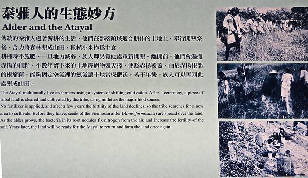 蘭陽博物館 (18).jpg