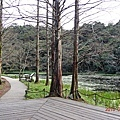 福山植物園 (1).jpg