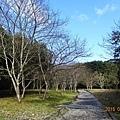 福山植物園 (4).jpg