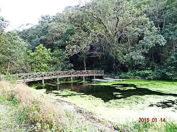 福山植物園 (6).jpg