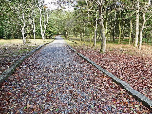 福山植物園 (18).jpg