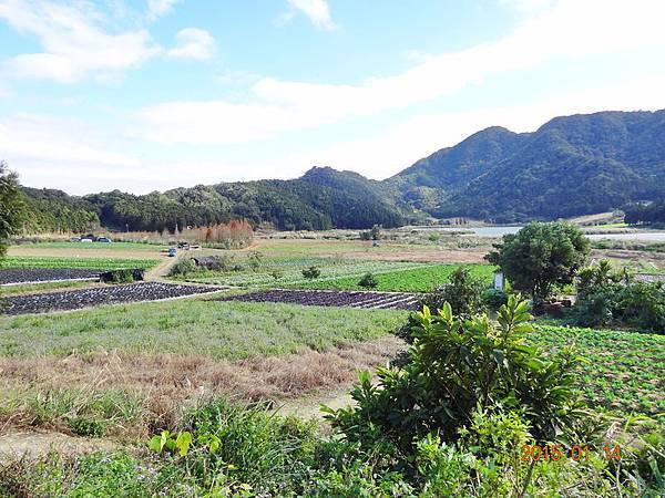 福山植物園 (20).jpg