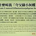 蘭陽博物館 (4).jpg
