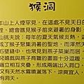 2015南投賞梅 (16).JPG