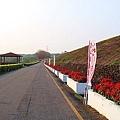 1000414午後~烏山頭 (9)