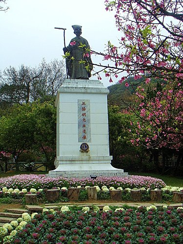 陽明山大島櫻、杜鵑~竹子湖海芋~20110315 (9).jpg