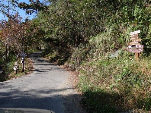鎮西堡檜木林區~2012秋遊新竹(二) (2)