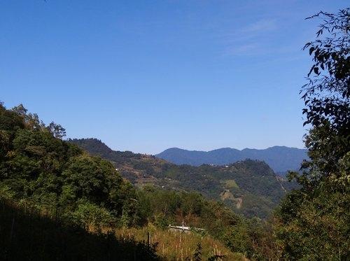 鎮西堡檜木林區~2012秋遊新竹(二) (3)