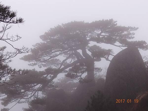 20170119-20黃山 (50).JPG