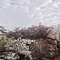 20170119-20黃山 (59).JPG