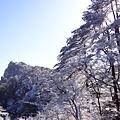 20170119-20黃山 (67)