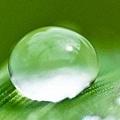 01603_droplets_2560x1600.jpg