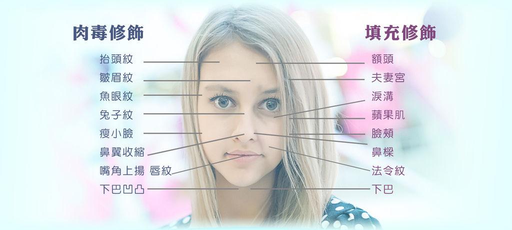 臉注射部位.jpg