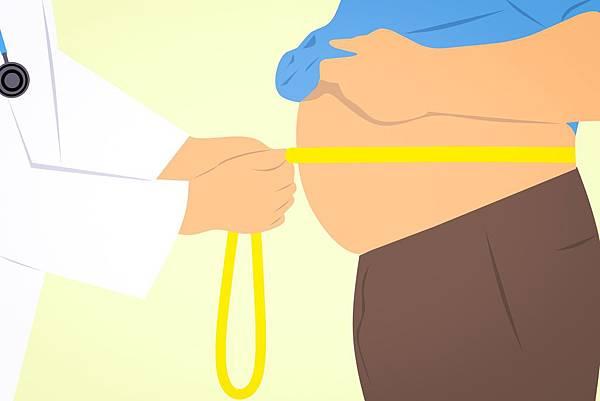 obese-3011213.jpg