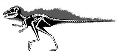 侏儒恐龍 - 長滿獠牙 重量如家貓 侏儒恐龍「帶刺」出土