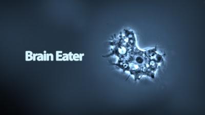 巴基斯坦出現專吃大腦寄生蟲(brain-eating amoeba) -                   專吃大腦寄生蟲