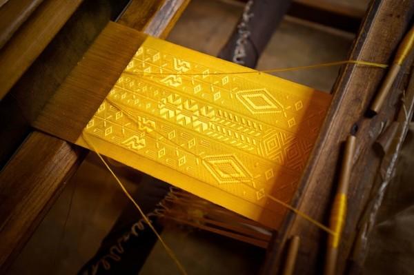 百萬黃金蜘蛛絲
