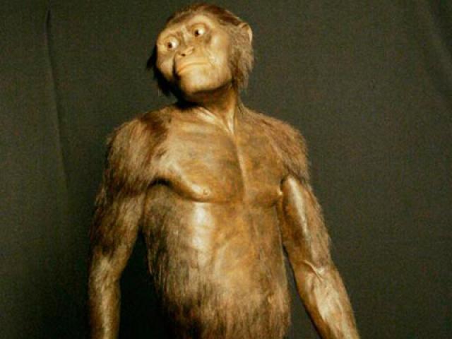 人類祖先露西