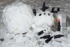 性侵可愛雪人