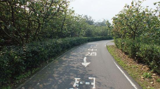 萬里線自行車道_01.jpg