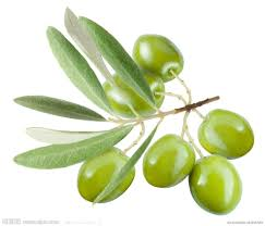 橄欖油-2